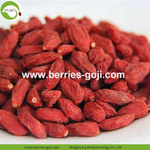 Super Food Dried Las Bayas De Goji