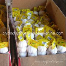 Embalagem Embalagem Chinês Alho Branco Fresco
