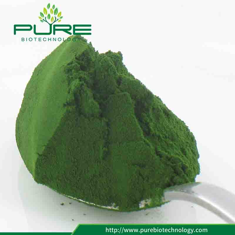 Certified Orgnaic Chlorella Powder 2