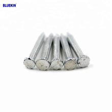 China Cheap Hot Dip And Electro Galvanized Steel Concrete Nails Manufacturer