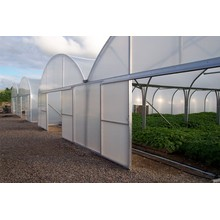 Kina Factory Price Film Cover Greenhouse