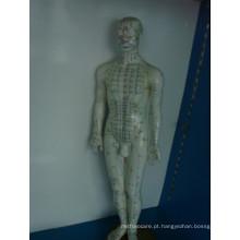 Módulo de ponto de acupuntura