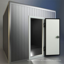 Hochwertiger Kühlraum-Kühlcontainer
