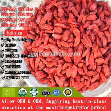 La meilleure baie de Goji de nutrition certifiée organique avec de haute qualité