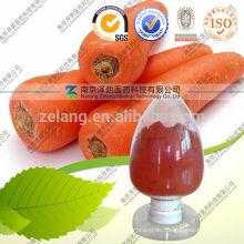 Beta-Carotin-Pulver als gesunde Lebensmittelfarbe