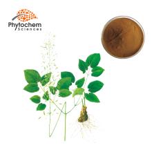 Chinese Organic Natural yin yang huo extract epimedium aerial parts extract epimedium icariin 1000mg