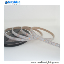DC12V/DC24V 5050 RGBW SMD LED Strip Light Waterproof Strips