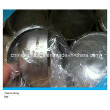 Stainless Steel Buttwelding ANSI B16.9 316ti Cap