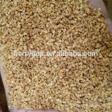 Goji berry seed/NQ-1/NQ-7 goji seeds/For plant