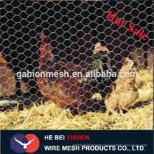chicken coop galvanized wire mesh