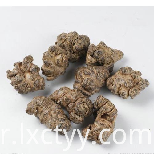 hot sale pseudo-ginseng foot tea