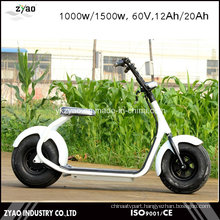 1000W Two Wheels Electric Scooter Motor 2 Wheel Scooter for Adults Motorcycle Electric