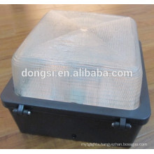 glass cover 60W LED cannopy wall light