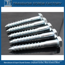 8*60mm Galvanized Steel DIN571 Wood Screw