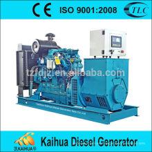 15kw Desarrollado por Yuchai grupos electrógenos diesel