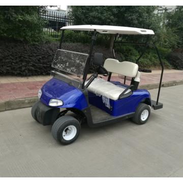 горячая распродажа 2-х местный маленький гольф-кар