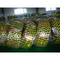 China Motorcycle Tyre Wholesale in Venezuela (OWN FACTORY)