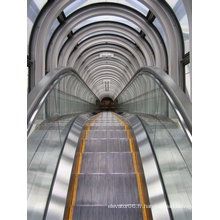 Escalator d'Aksen Type d'étape mince en aluminium Type intérieur et extérieur