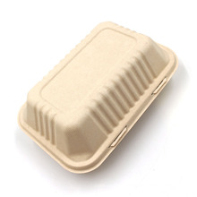 Eco-Friendly Biodegradable Sugarcane Bagasse Food Container Clamshell Food Box Tableware