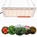 Tablero cuántico Wenyi Grow Light 120w 240w