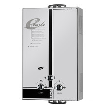 Flue Type Instant Gas Water Heater/Gas Geyser/Gas Boiler (SZ-RS-45)