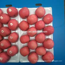 Delicious Fresh Fuji Apples