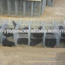 Cages en vison en acier inoxydable / cage Fox et cage en vison galvanisé