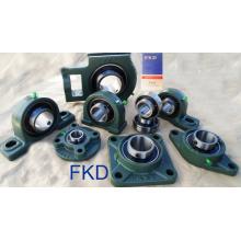Fkd Pillow Block Bearings (UCP205/UCF205/UCT205/UCFL205/UC205/UK205/SA205/SB205/UEL205)
