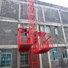 Alzamiento del edificio Ss100 / 100 1ton para la construcción Alzamiento de construcción usado