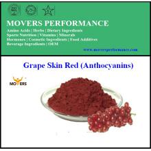 Rein natürliche hochwertige Traubenhaut-Extrakt (Anthocyane)