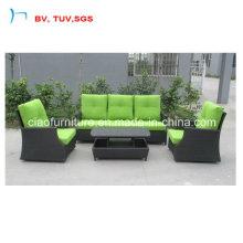 3+2 диван с зеленой подушке цвета (CF1290A)