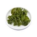 Comprar online ingredientes activos Extracto de algas en polvo