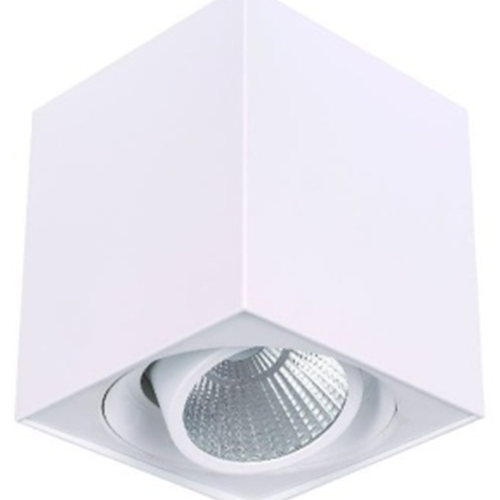 Surface Mounted White LED Downlight