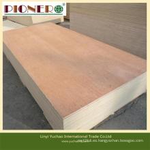 Madera contrachapada / madera comerciales de la cara de 4 * 8feet Bintangor para los muebles
