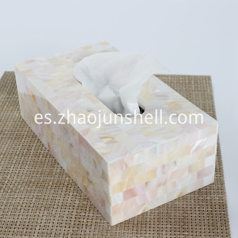 Chinese river shell tissue box