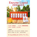 Enzyme essence liquid Food