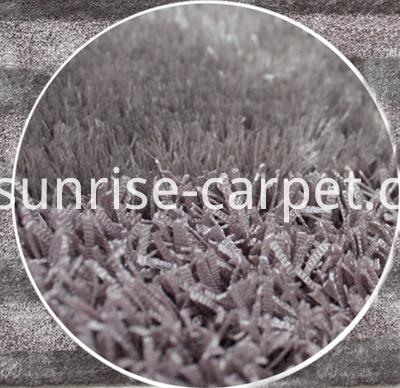 strip carpet