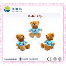 Wholesale Custom Musical Teddy Bear with Custom T-Shirt