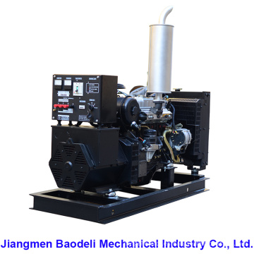 Precio Diesel Generator 20kVA (BIS20D)
