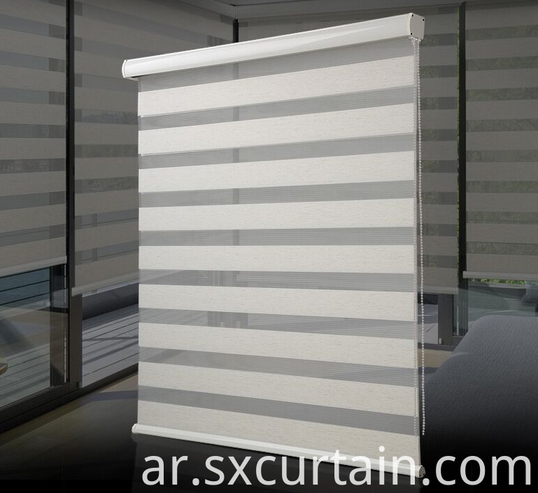 Zebra Roller Curtain Shade Plain Dyed