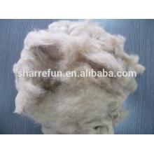 Fibres lisses et douces de cheveux de chien de 20.0mic / 26mm de chien pour tourner