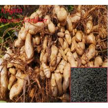 bulk wholesale granular Organic biological Fertilizer