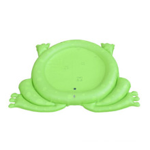 Frog Shape Baby Water Mat