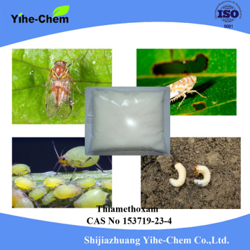 Insecticide Kill Insect Aphids Thiamethoxam 25% WDG