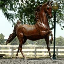 Projeto popular bronze tamanho vida estátua do cavalo para decoração de jardim