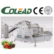 SUS 304 máquina de secagem de fruta industrial / linha de processamento de vegetais / máquina de desidratação