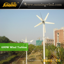 Residential Wind Generator 600W Wind Turbine Ventilator Home Use