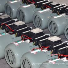 Moteur à courant alternatif d'induction de condensateurs de double valeur de 0.5-3.8HP pour l'utilisation de découpeuse de pomme de terre, solution de moteur à courant alternatif, stock à bas prix