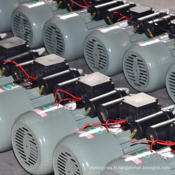 0,5-3.8HP Condensateur résidentiel de démarrage et moteur asynchrone à courant alternatif à courant alternatif pour l'utilisation de machines agricoles, OEM et Manufacuring, stock à bas prix