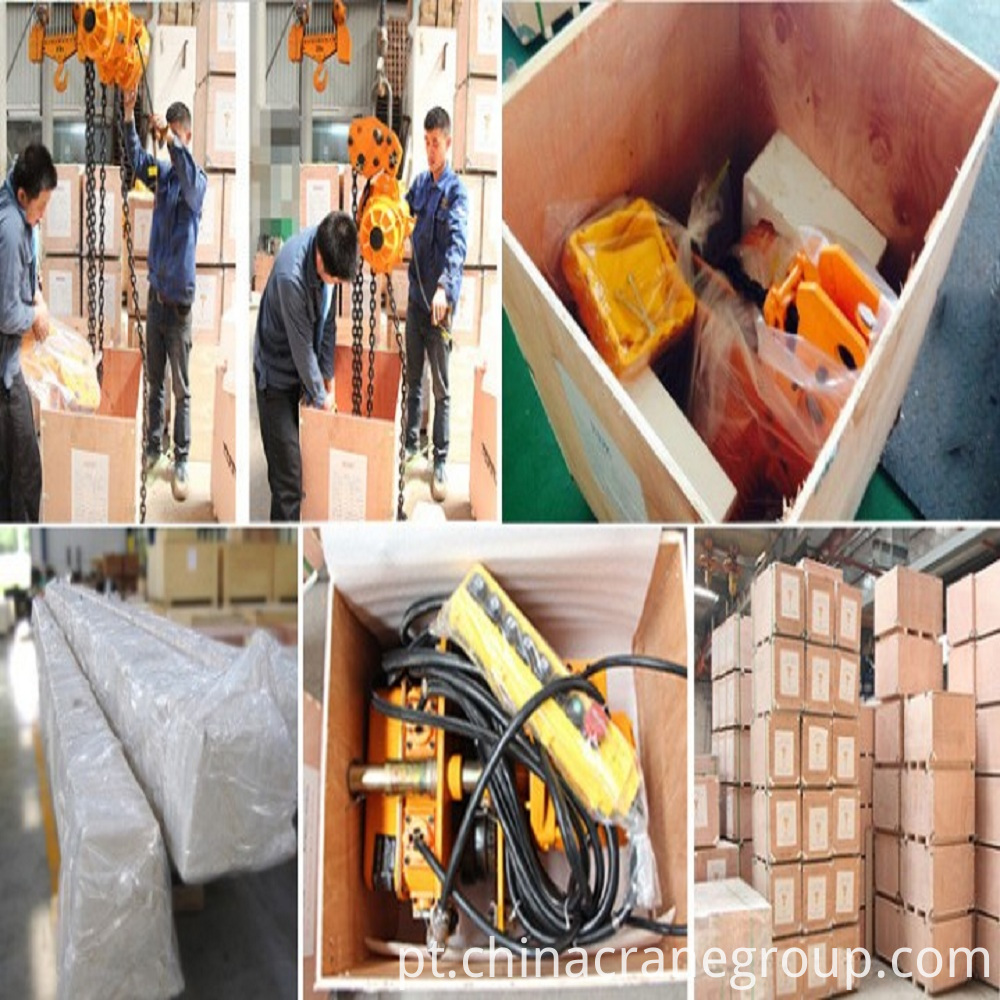 LT-2 Ton 220V Electric Chain Hoist with Trolley Packing